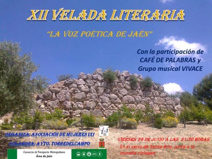 Cartel XII velada literaria