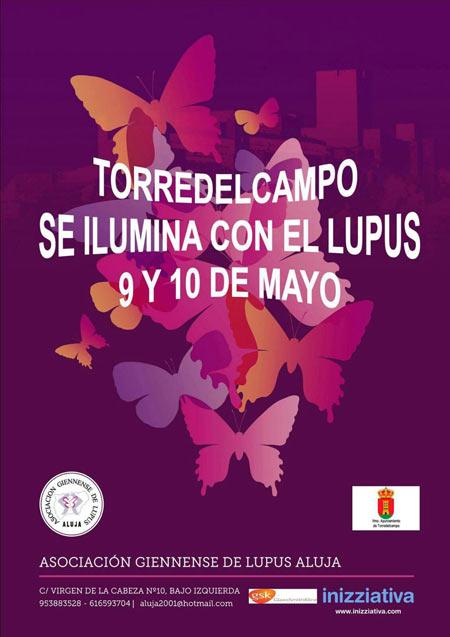 torredelcampo-ilumina-lupus02